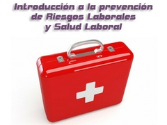 curso-introduccion-prl-mini