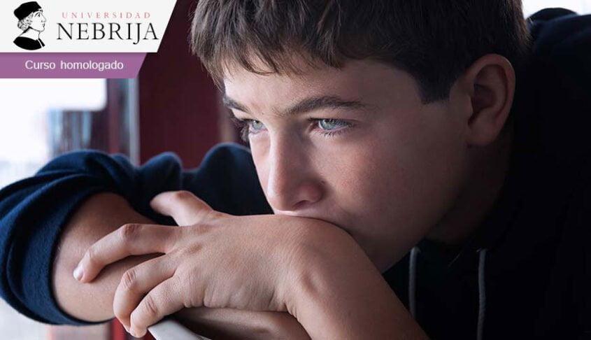 Curso online a distancia sobre Autismo y Educación