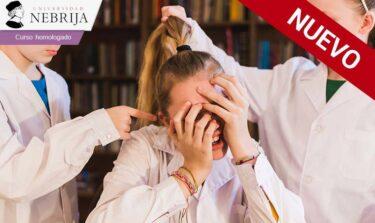 Curso sobre acoso escolar, de nuestro catálogo de cursos homologados online