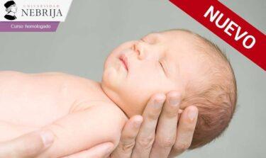 nuevo curso para enfermeras acreditado y válido para tu oposición sobre neonatos